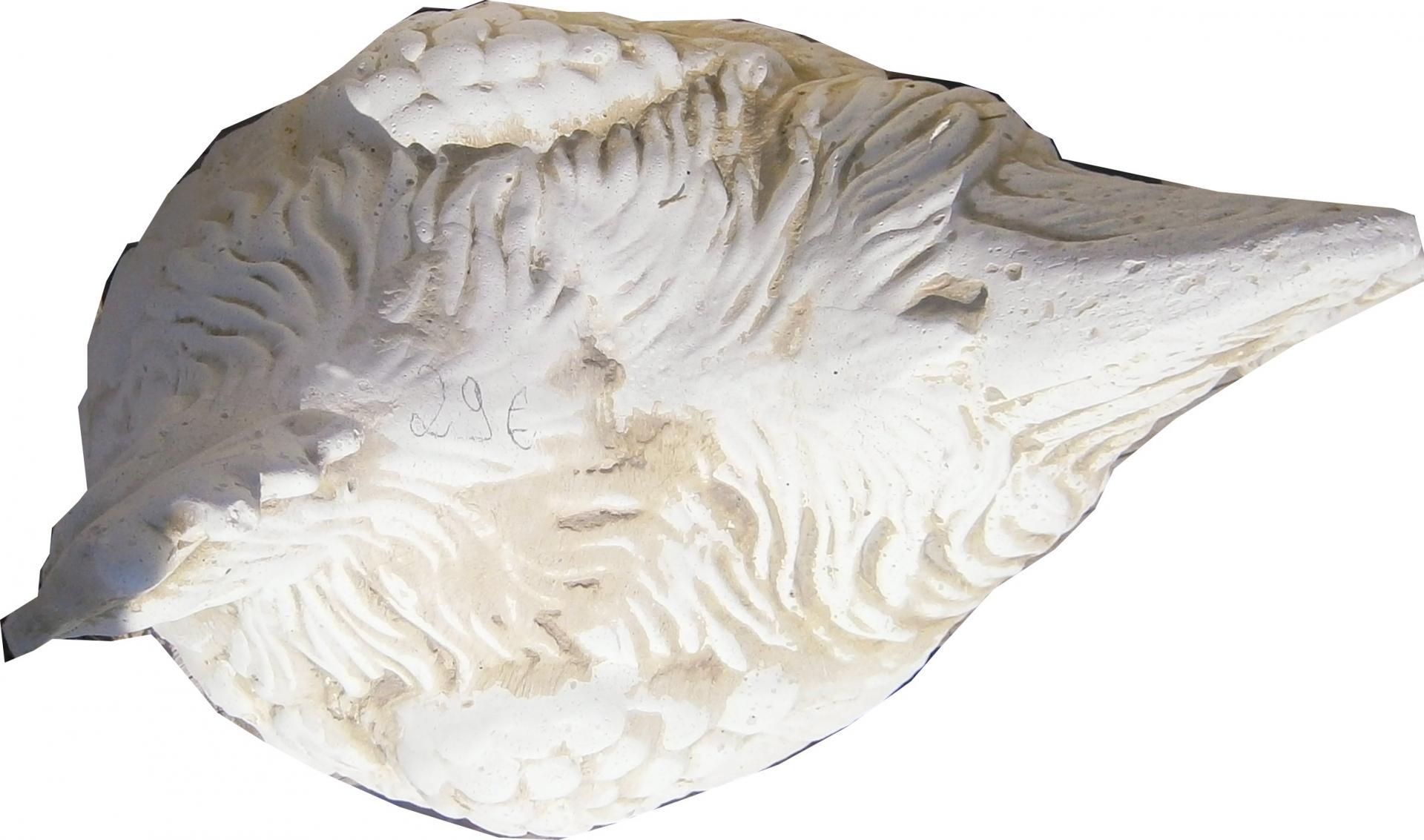 P6131081