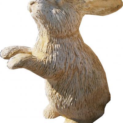 Adorable petit lapin
