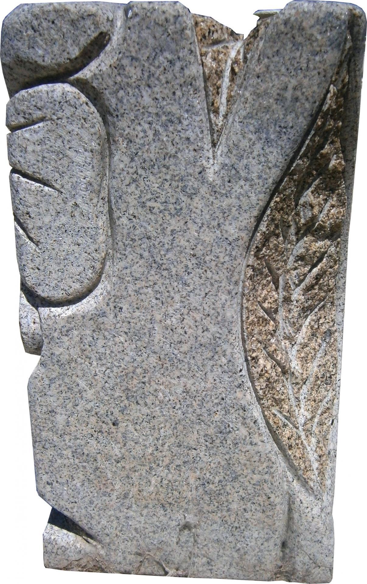 P6261509