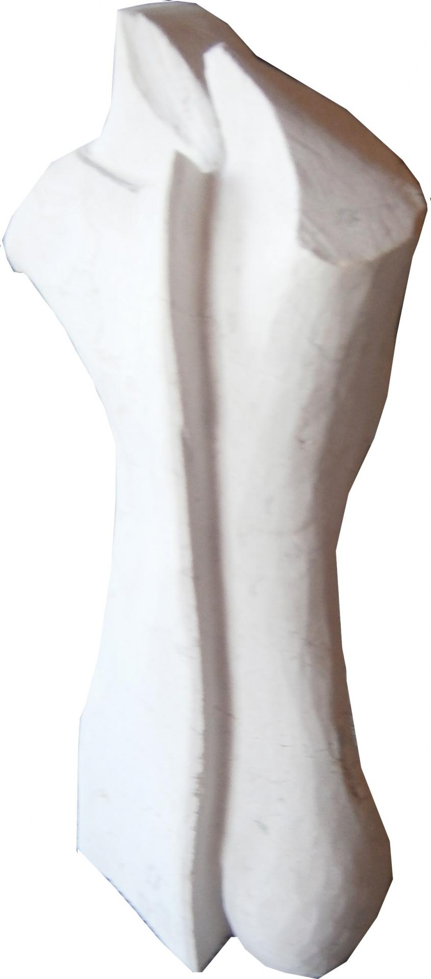 P6271535